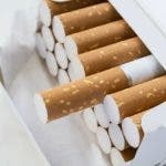 Opened pack full of cigarettes closeup