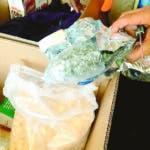 """Por el Mismo Puerto y por la Misma Vía Más Droga Camuflada como Cereales a través de una Mudancera . - A tres días de un hallazgo similar, la Dirección General de Aduanas (DGA) descubrió otros 48 paquetes de un vegetal, que se presume es marihuana, como parte de las mercancías que traen al país las denominadas """"mudanceras"""" o shippings y, como en el caso reciente, también por el puerto de Haina.  Hoy/Fuente Externa  28/02/20"""