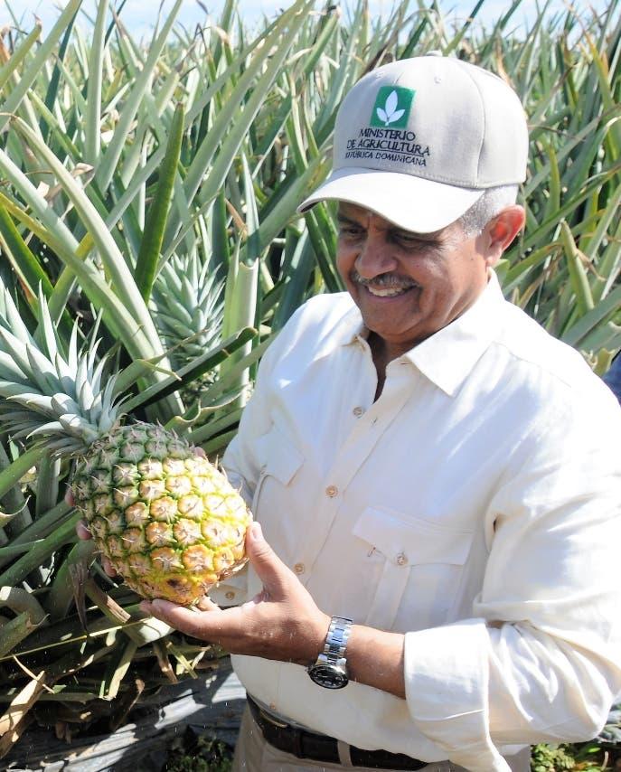 Sector agro tiene desafíos subir producción y  competitividad