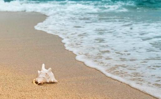 La mitad de la playas de arena podrían desaparecer este siglo