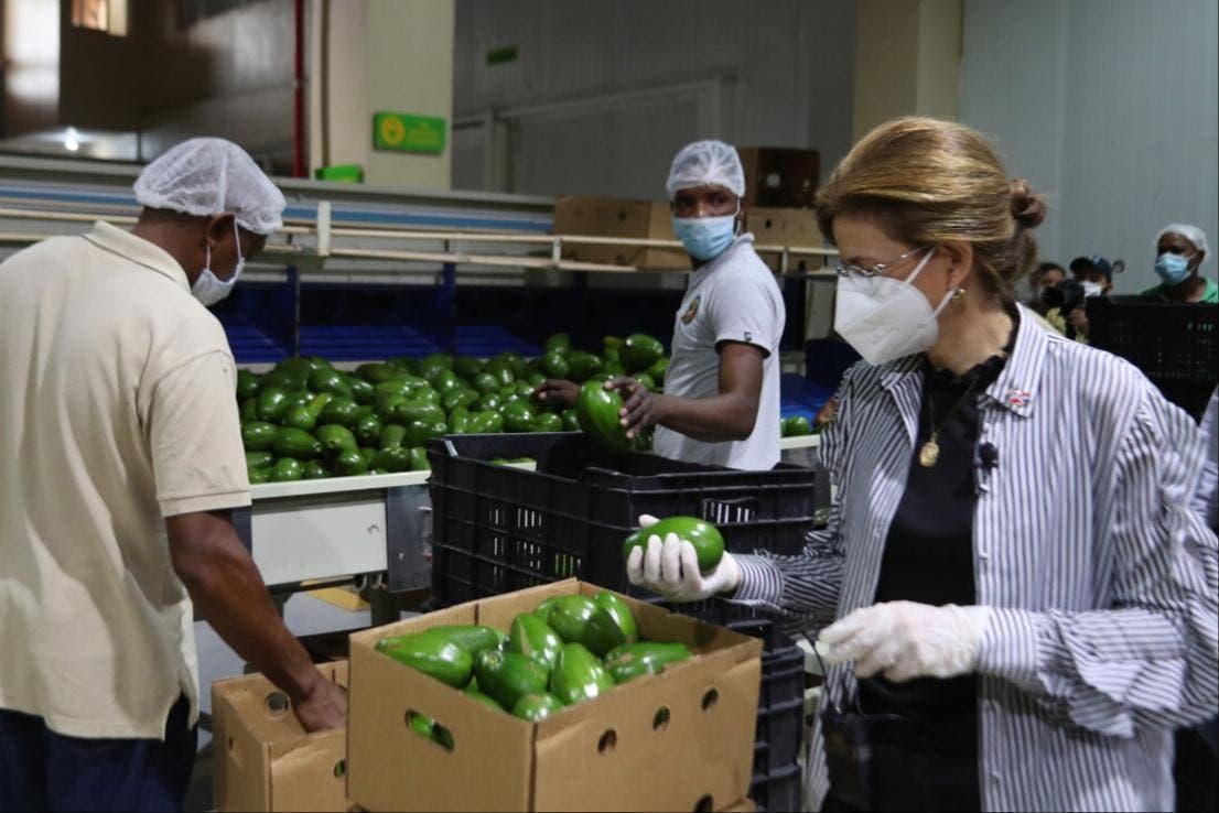 """""""Programas sociales deben incluir trabajador de la tierra"""", dice Raquel Peña"""