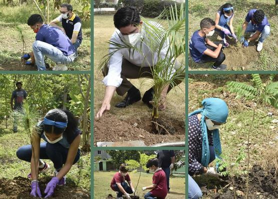Peña Mirabal destaca rol de comunidad educativa en semana del árbol