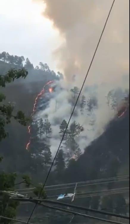 VIDEO: nuevo incendio en Constanza; sospechan hay manos criminales detrás