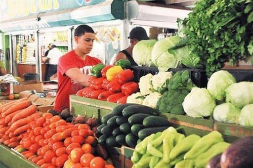 COVID-19: Productores agrícolas piden a Ministerio mejor oferta para compra de sus vegetales