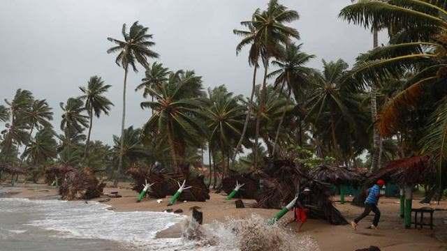 Tormenta Isaías genera ráfagas de vientos y tumba varios árboles en el Este de República Dominicana