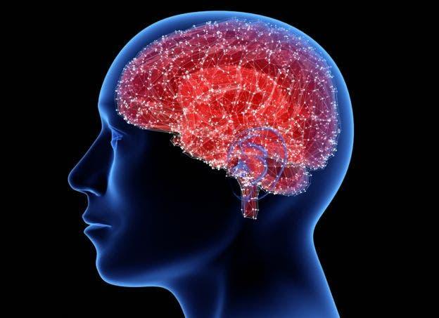 El cerebro es capaz de prescindir del tiempo para tomar decisiones rápidas