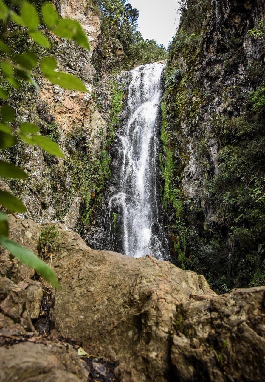 Medio Ambiente: Conozca las áreas protegidas que podrá visitar bajo estricto protocolo de salud