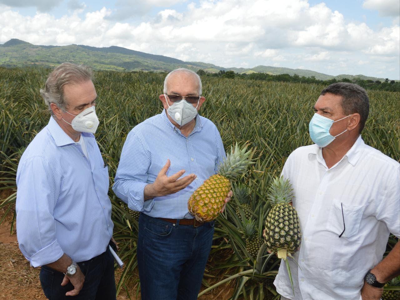 Gobierno pagará deudas por RD$200 millones a productores asegurados