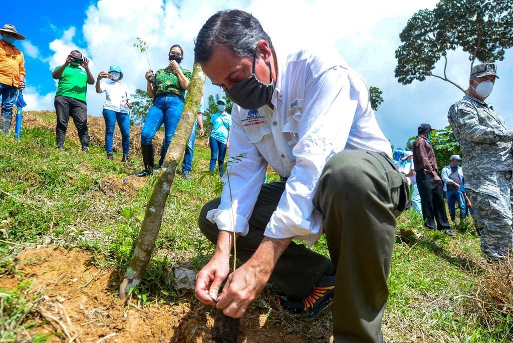 Realizan jornada de reforestación para rescate de ríos Ozama e Isabela