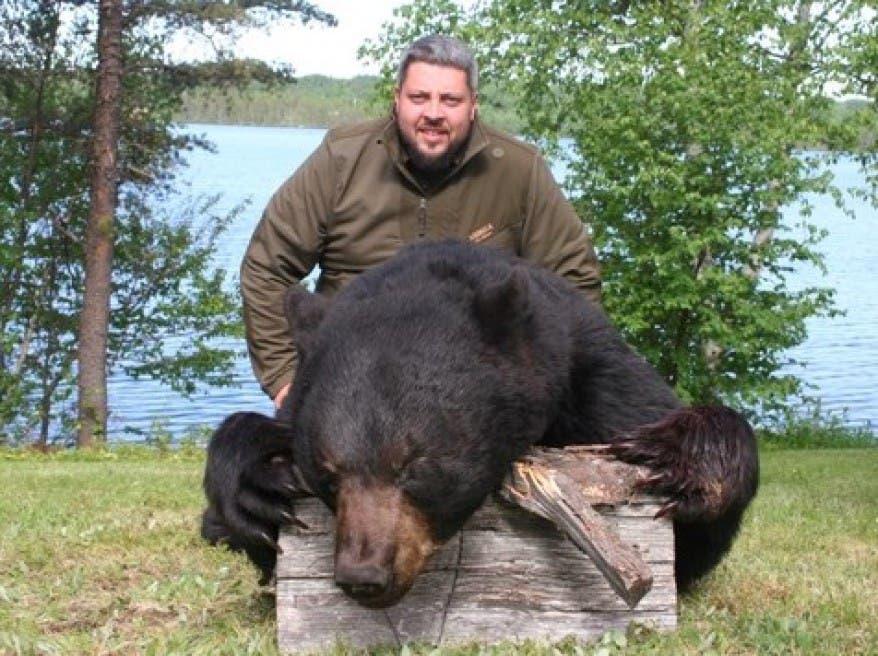 La tradicional caza de osos en Nueva Jersey se prohibirá a partir de este año
