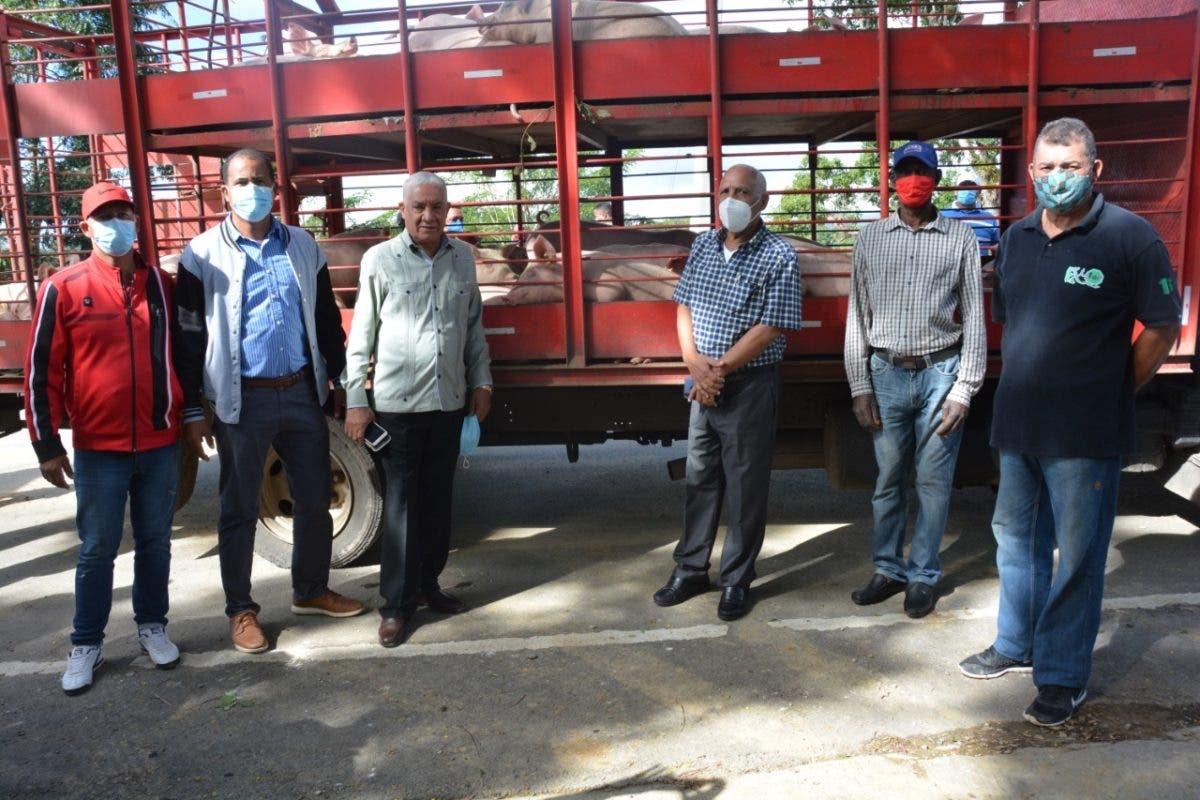 FEDA entrega 200 cerdas, 50 vacas y pollitas ponedoras a campesinos de Santiago