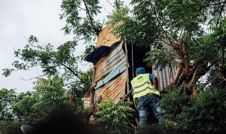 INVI construirá casa a niño que vive en un árbol