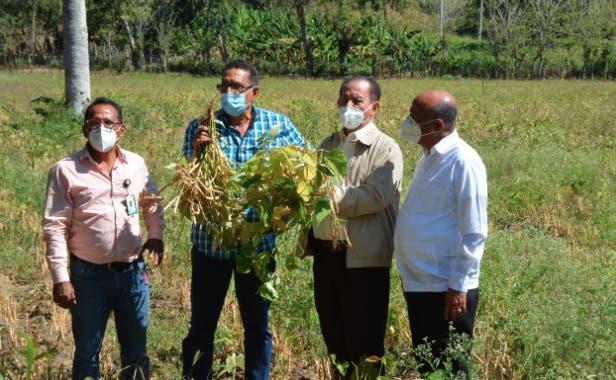 Director del FEDA Efraín Toribio llama a consumir productos nacionales