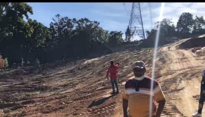 Ministro de Medio Ambiente suspende permisos otorgados para corte de árboles en Loma Miranda
