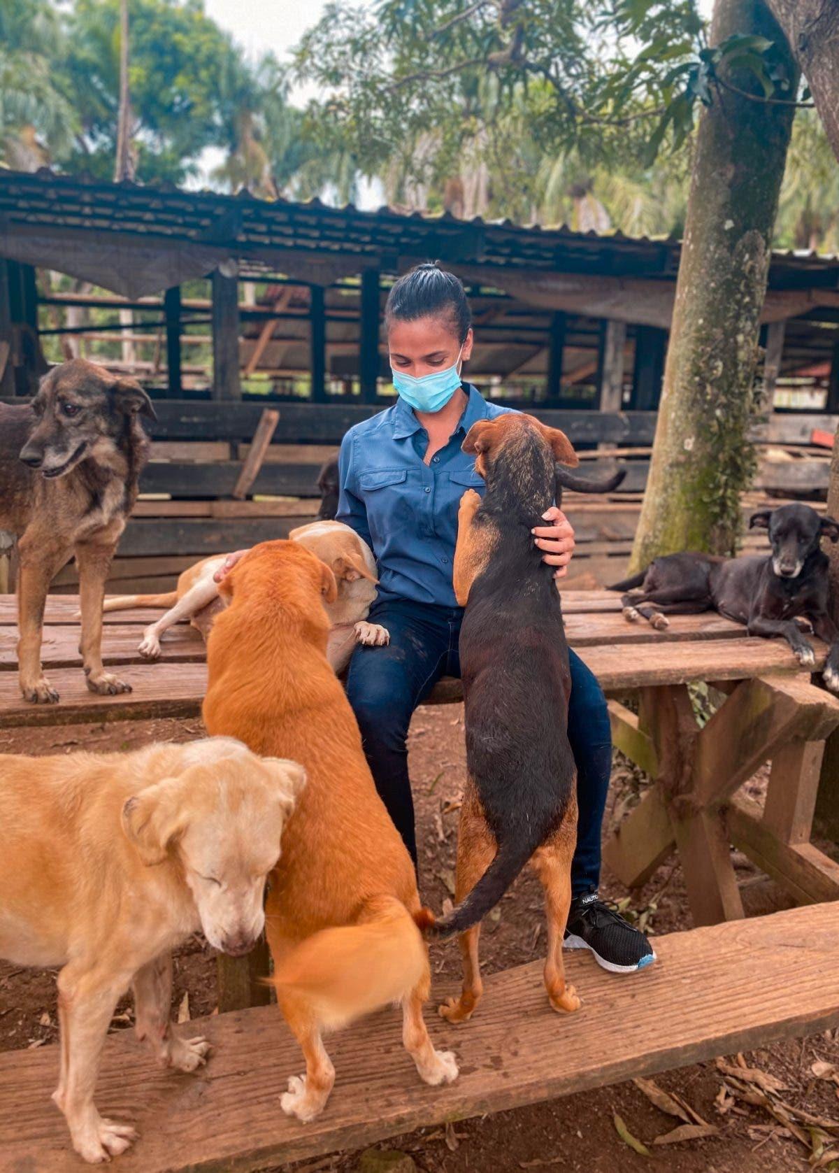 """""""La  crueldad hacia  animales es muy recurrente en RD"""""""
