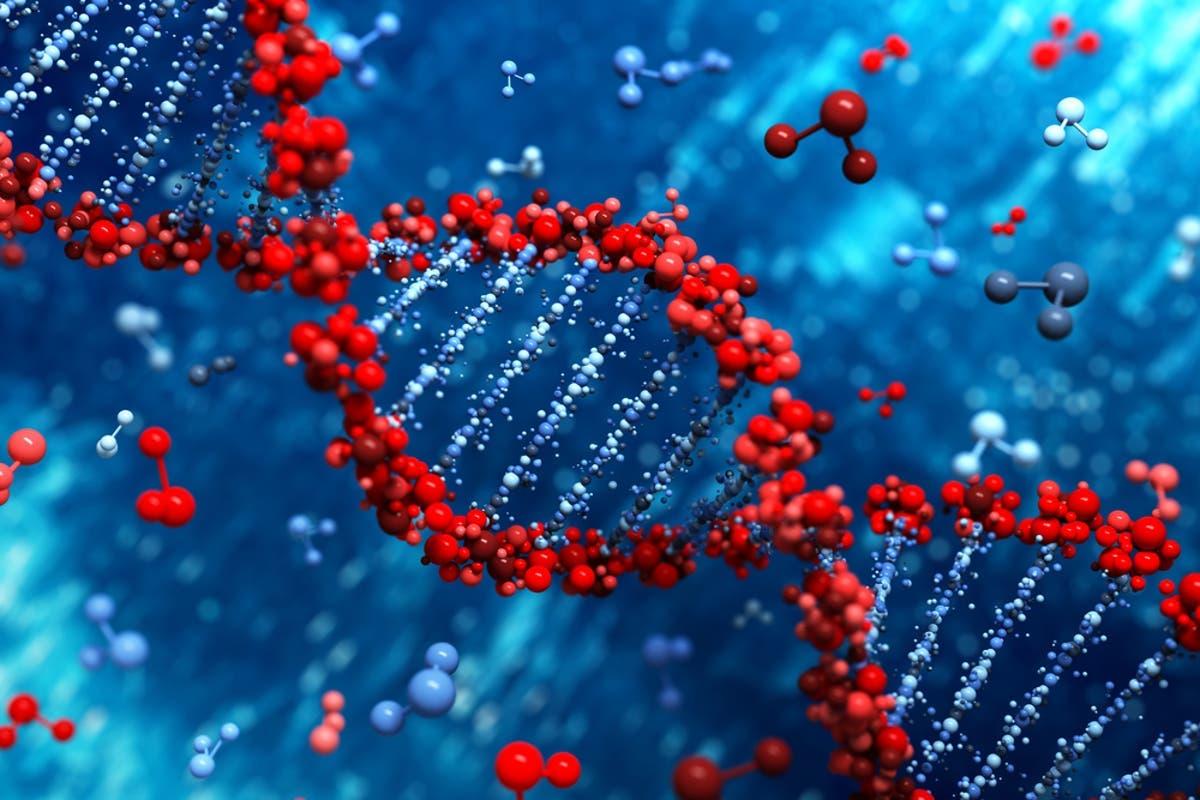 """Los """"genes saltarines"""" causantes de cáncer se remontan a 3 millones de años"""