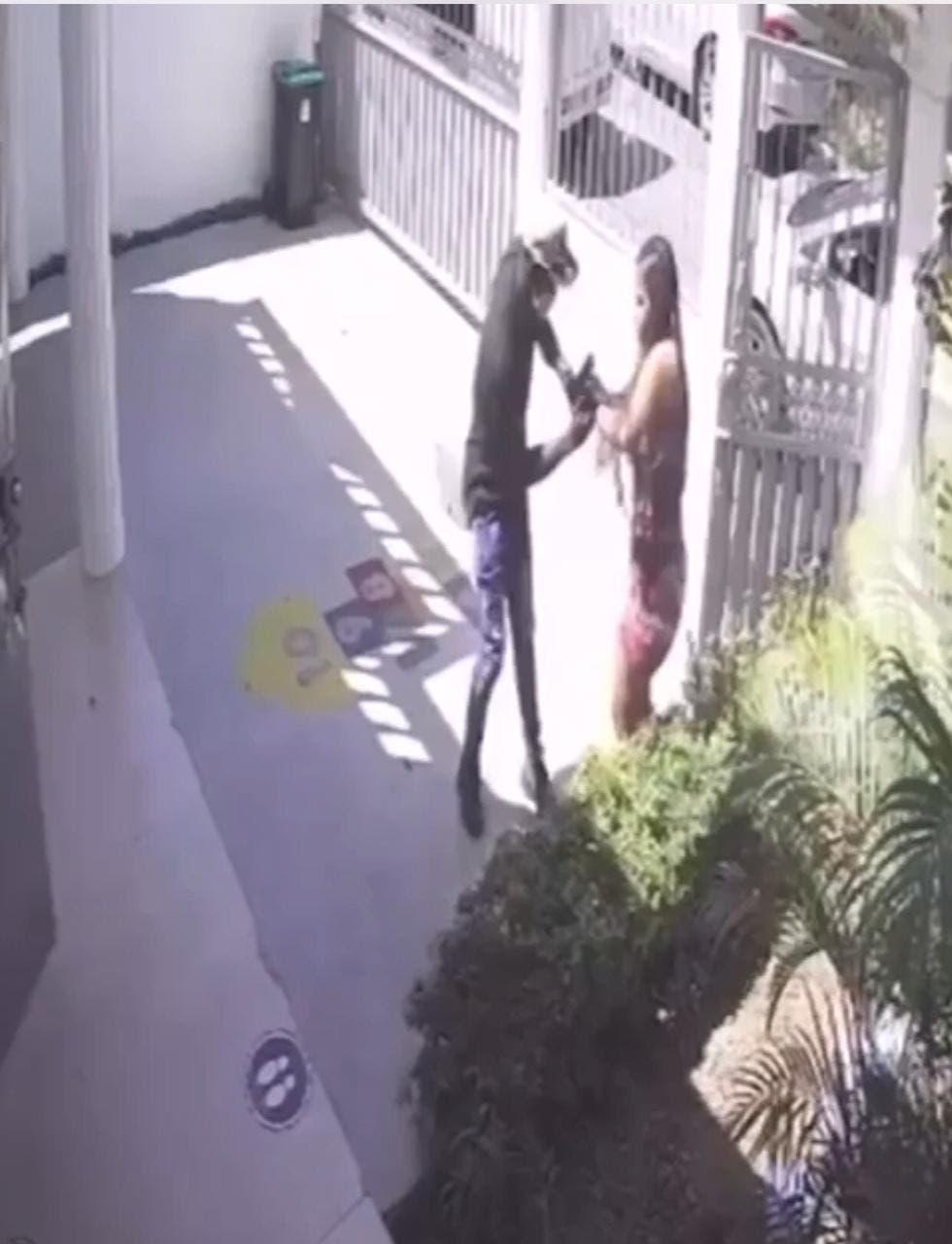 Niño de 5 años: ¿Mamá, Llegaron los ladrones otra vez?