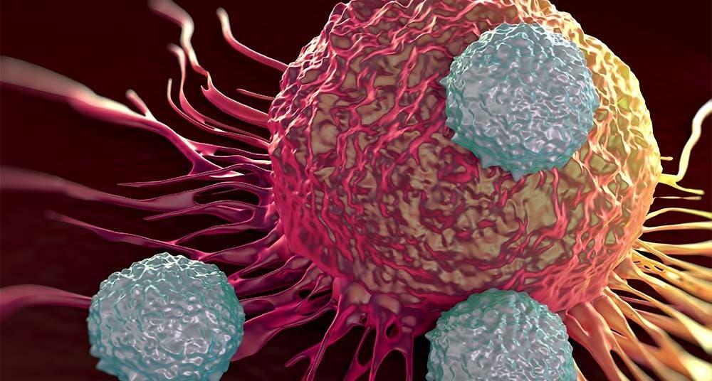 Proteínas atípicas, posible nueva diana terapéutica contra el cáncer
