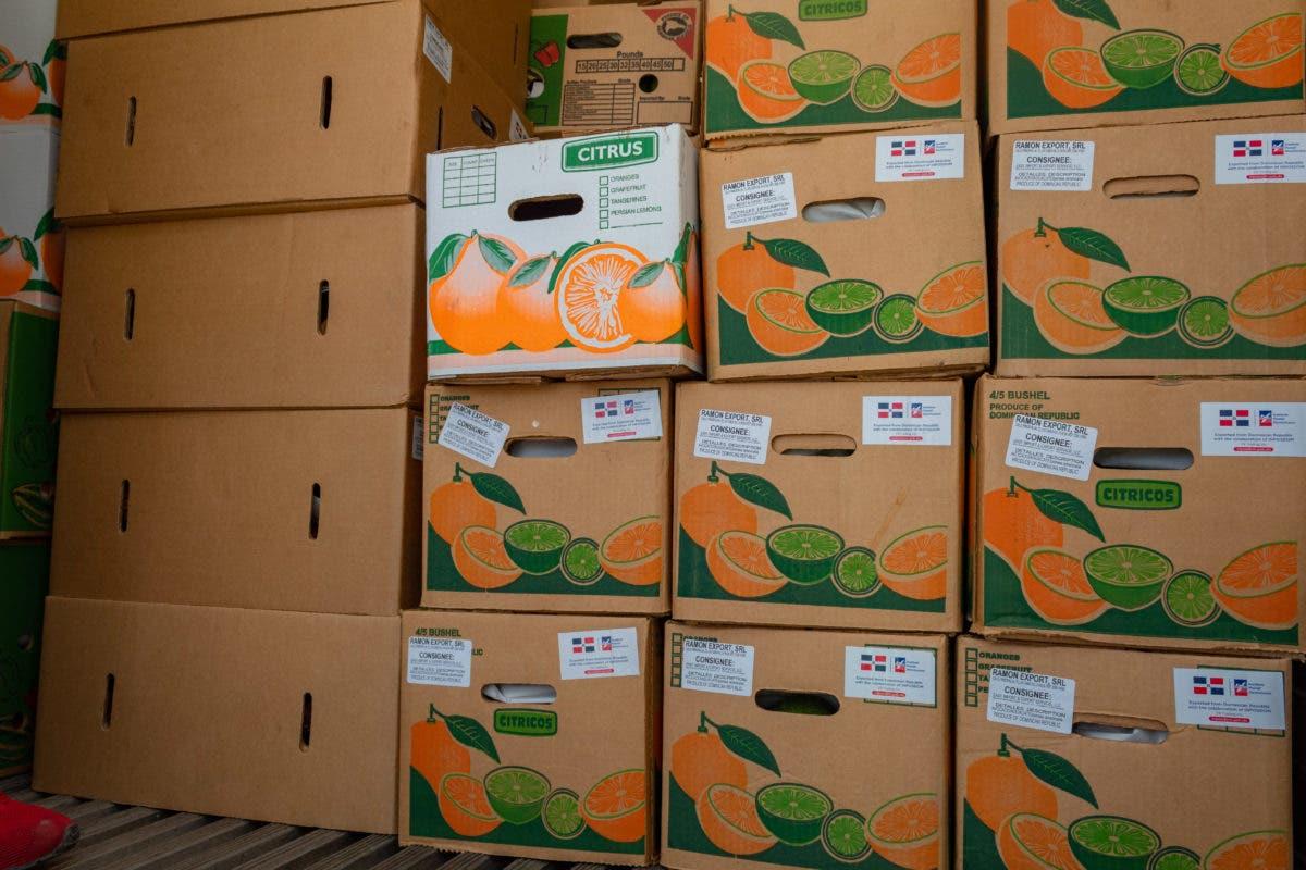 Inposdom exporta primer cargamento de frutas y vegetales por la vía aérea hacía Saint Thomas