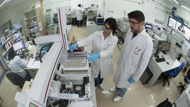 Descubren un mecanismo celular cuya disfunción podría causar enfermedades