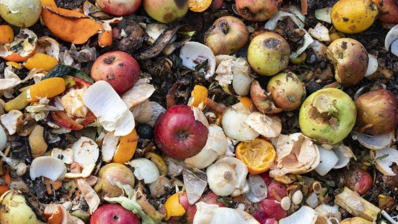 Las impactantes cifras que deja el desperdicio de comida en el mundo (y sus efectos)