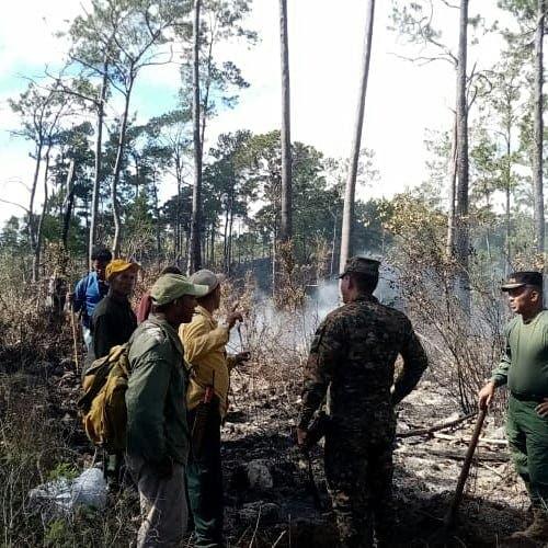 Ministerios sofocan varios incendios forestales en el país