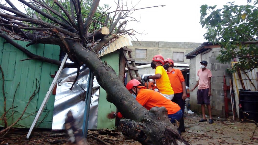 Aguaceros y vientos dejan daños en Santiago