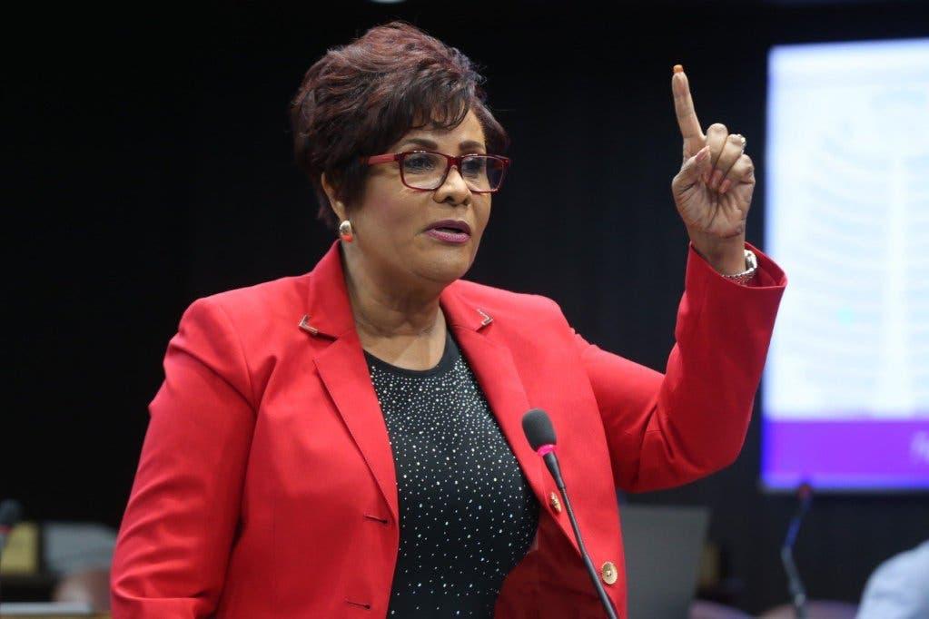 Josefa Castillo debe ocho millones por su candidatura