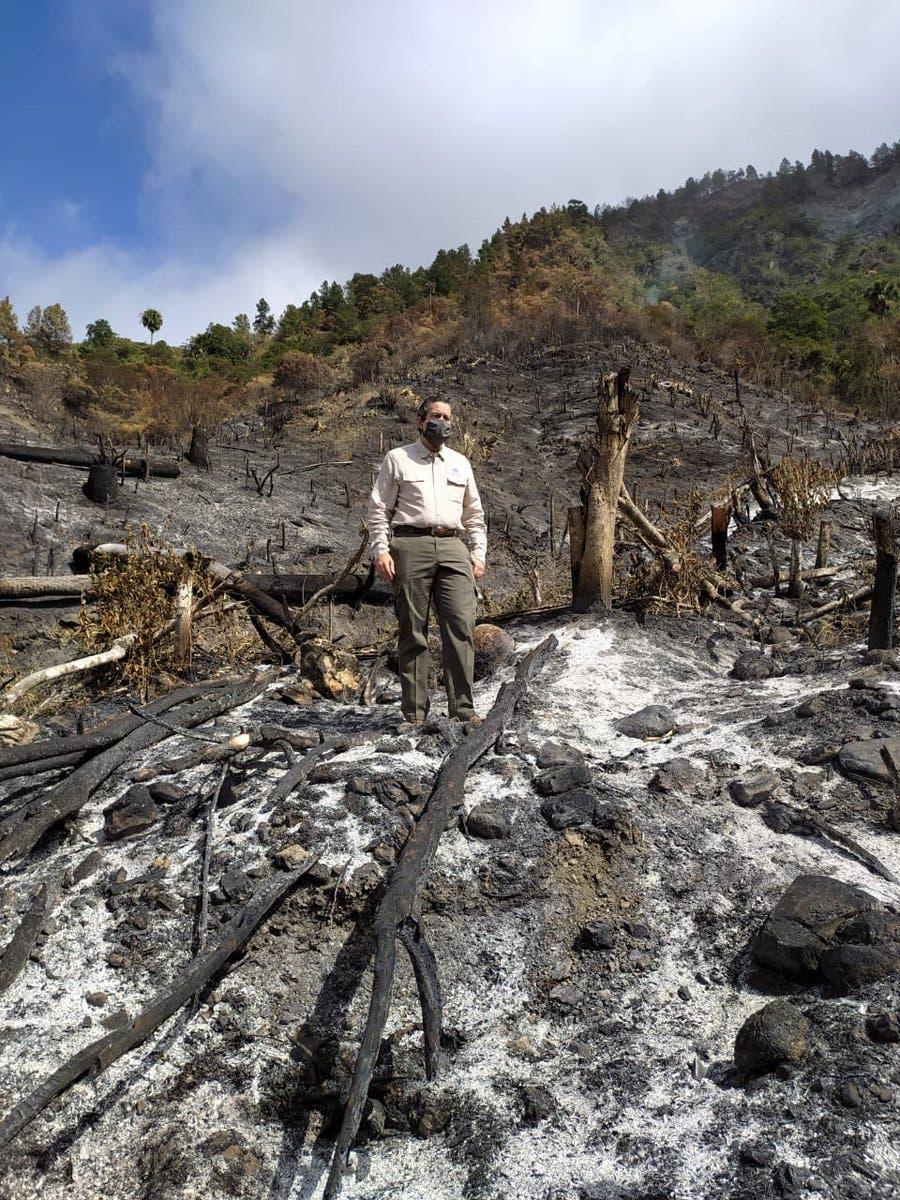 Medio Ambiente ha sometido a la justicia a 475 personas por cometer delitos ambientales