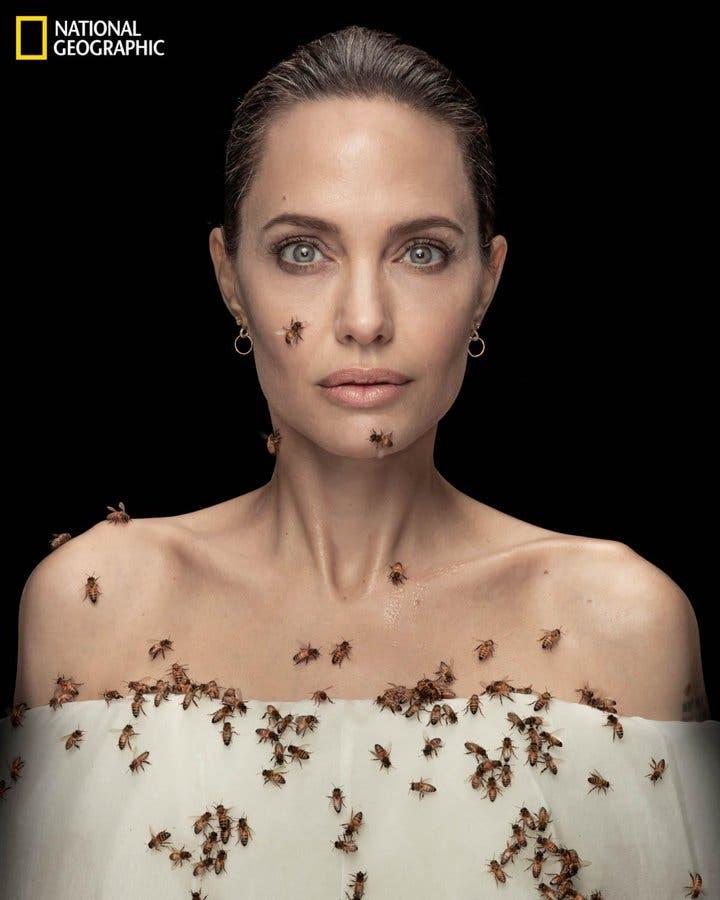 Angelina Jolie en el Día Mundial de las Abejas