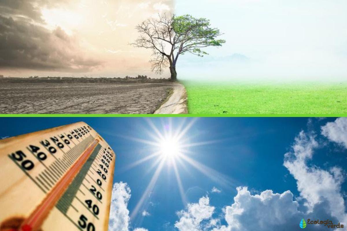 Gobiernos y empresas acuerdan aportar en transición energética