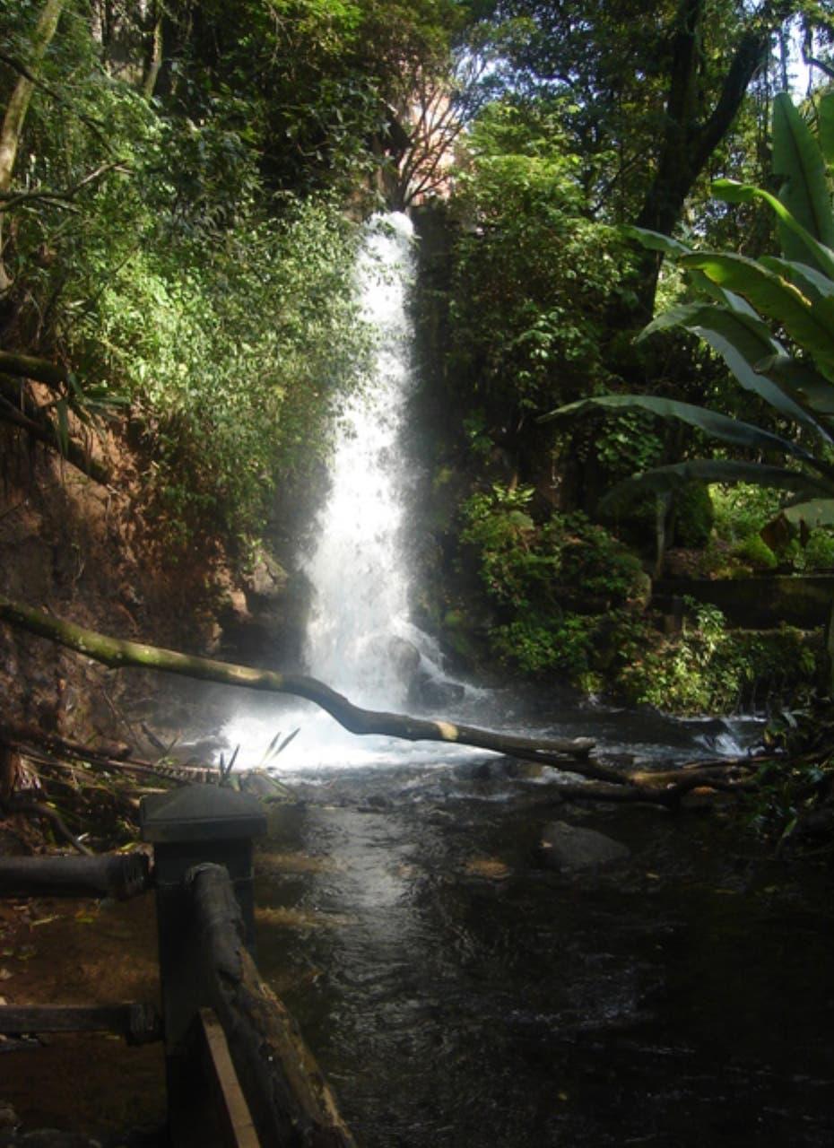 Consultor propone desarrollar el turismo ecológico en el país