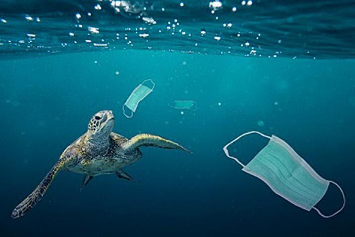 Basura marina en cifras: el 80 % es plástico, sobre todo bolsas y botellas