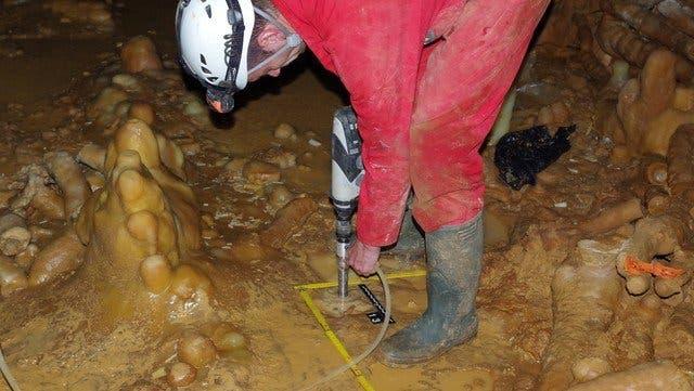 El análisis de los huesos neandertales y de los cálculos dentales arrojó luz sobre su ecología dietética.