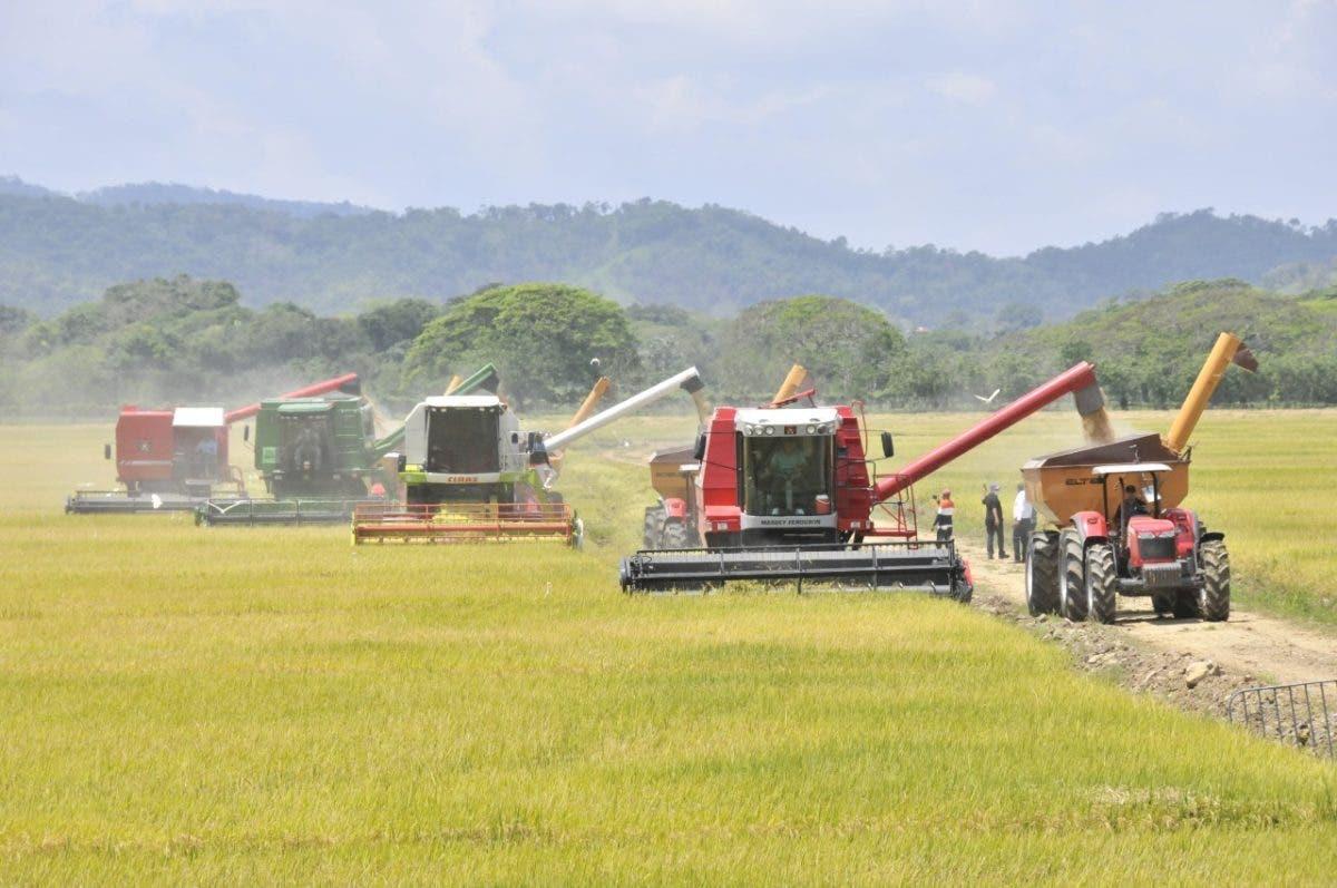 Los 11 productos que han bajado de precio, según el Ministro de Agricultura