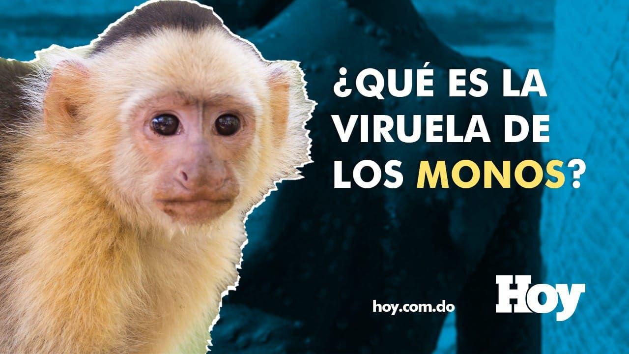 ¿Qué es la viruela del mono?