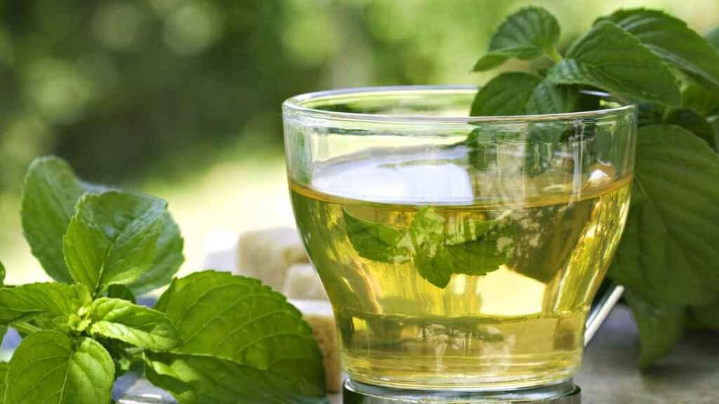 Nueve beneficios del té verde para la salud