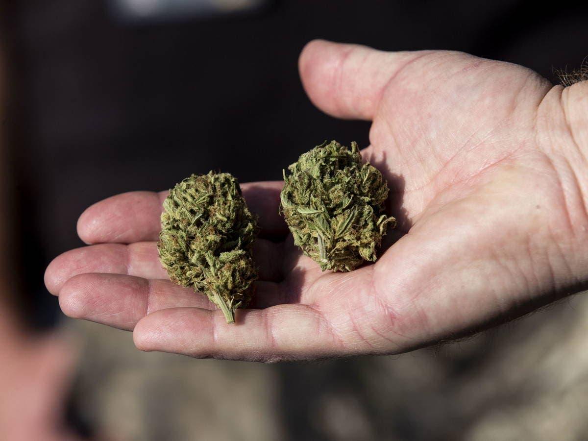 Decomisan marihuana en el AILA