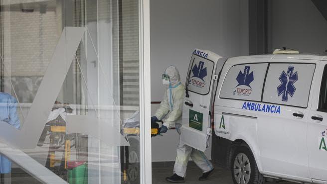 La quinta ola deja en julio 92.000 positivos en coronavirus y 150 muertos en Andalucía