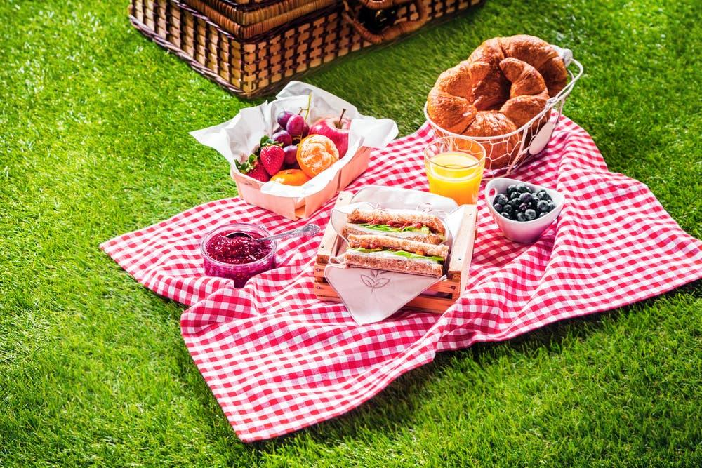 Los jardines del Palacio Nacional serán el lugar ideal para un pícnic: Aquí tedecimos qué hacer para asistir