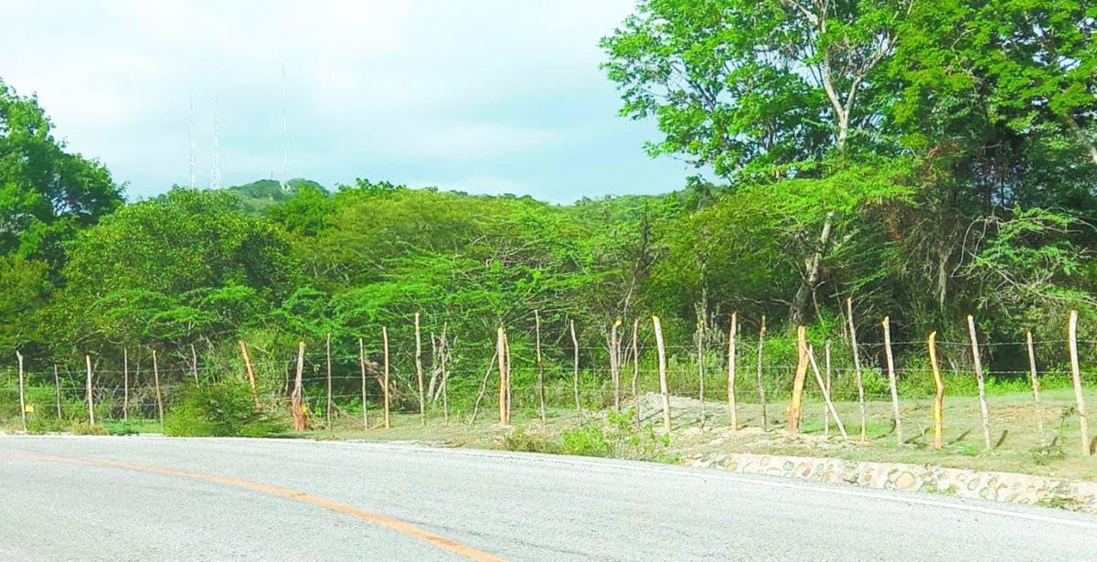 Comisión de oficiales indaga ocupación ilegal de  terrenos en distrito de Guanito