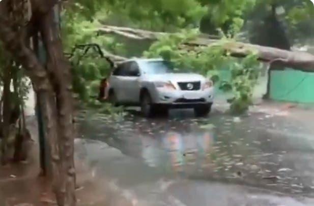 Lluvias por tormenta tropical Fred  inundan vías y derriban algunos árboles en Santo Domingo