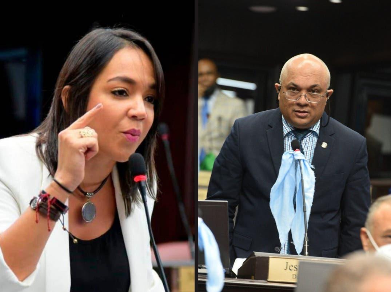 Diputado del PRM llama traidora a Faride por oponerse a Código Penal sin causales, ella responde
