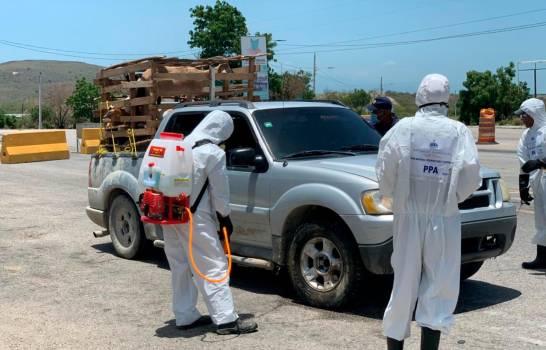 Refuerzan desinfección en varias regiones del país contra la peste porcina africana
