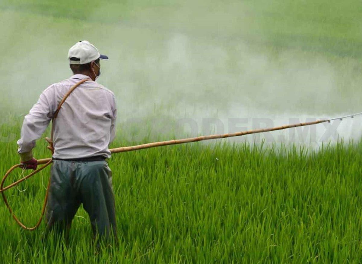 Alza costo agroquímicos hasta más de un 40 %