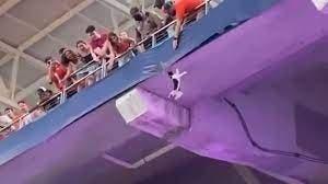 Video: El inesperado rescate de un gato que quedó colgado del techo de un estadio