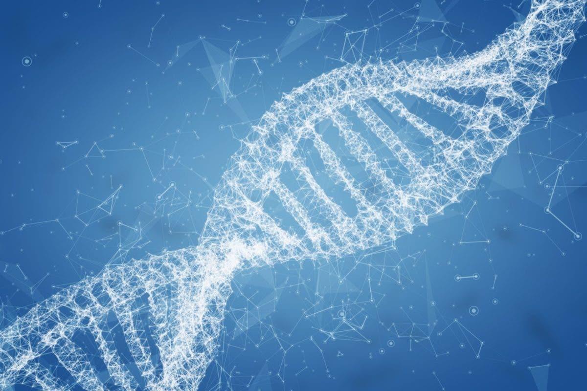 Un gen de monos y ratones interfiere con el VIH y el ébola