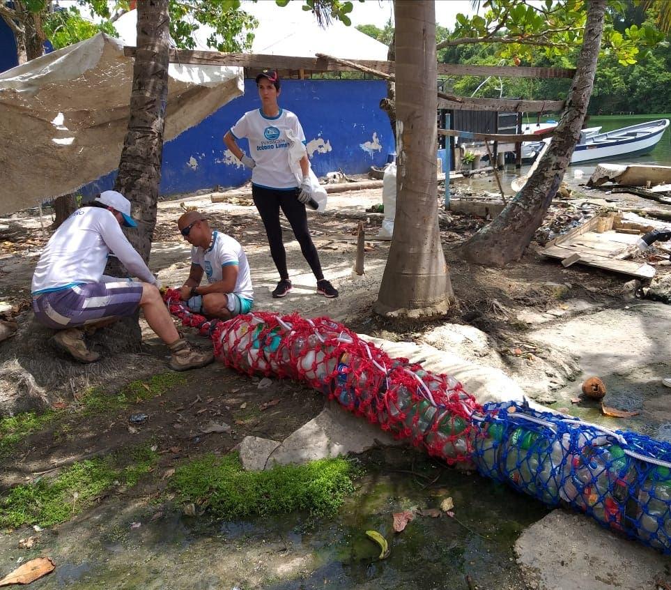 Celebran el Día Internacional de la Conservación del Manatí