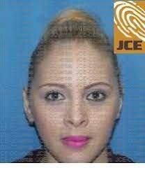 ¿Quién es Iris Borges, jueza que conoce el complejo caso Operación Falcón?
