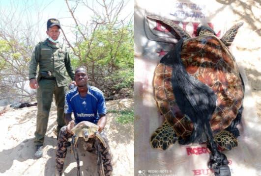 Apresan tres haitianos sorprendidos en actividades de pesca ilegal en Montecristi